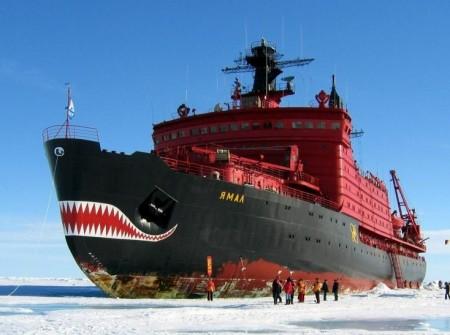 Собака на сене, или о Русской Арктике (2013)
