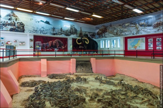 Музей охотников на мамонтов в Костенках